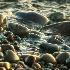 2Stones at Lake Ontario - ID: 15216070 © Teresa Letkiewicz