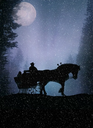 On Horse Open Sleigh