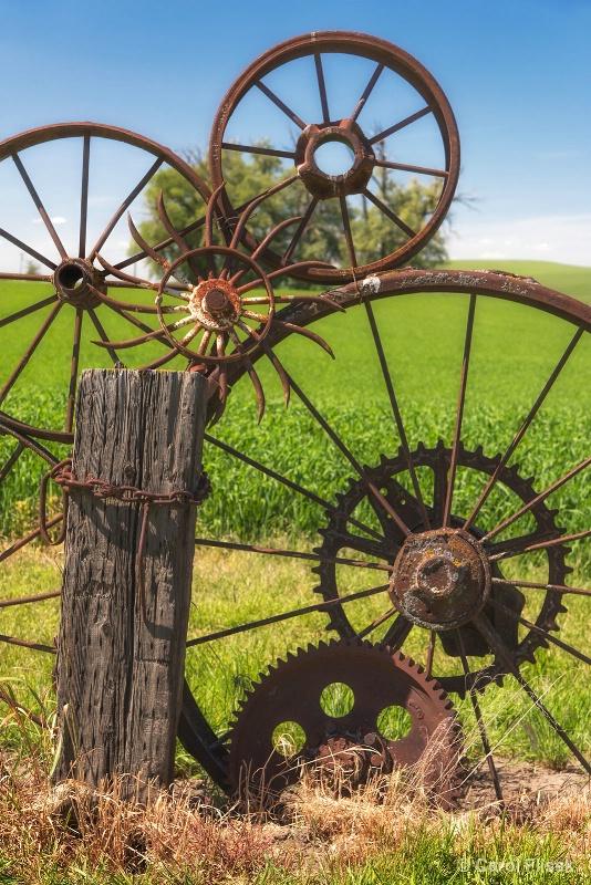 And the Wheels Go Round - ID: 15220309 © Carol Flisak