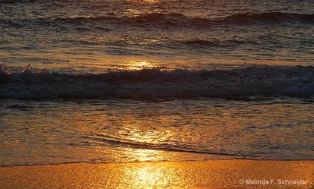 Sun in the Sea