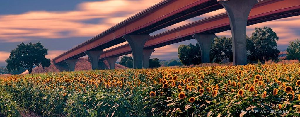 sun bridge - 3