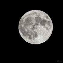 Super Hunter Moon