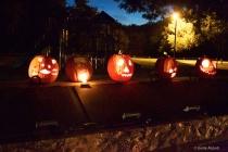 Pumpkin entries