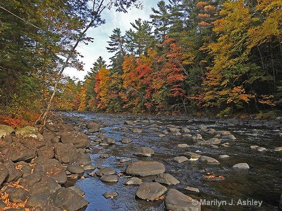 Schroon River,  Adirondacks  - ID: 15254638 © Marilyn J. Ashley