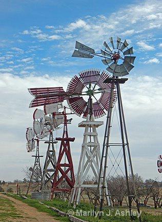 Windmill Museum, Lubbock - ID: 15254891 © Marilyn J. Ashley