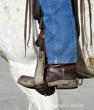 Rodeo Parade - ID: 15254900 © Marilyn J. Ashley