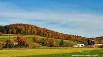 Madison Farm