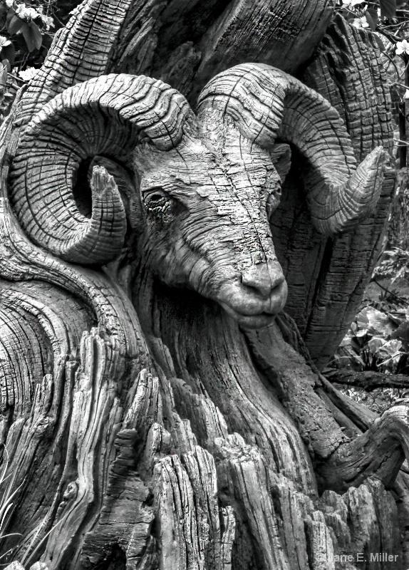 Ram Tree Carving
