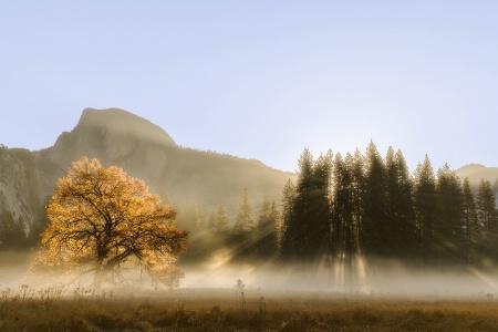 Cook Meadow Sunrise