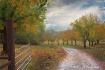walnut road