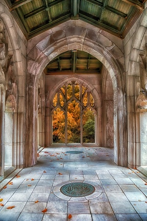 Autumn Arches