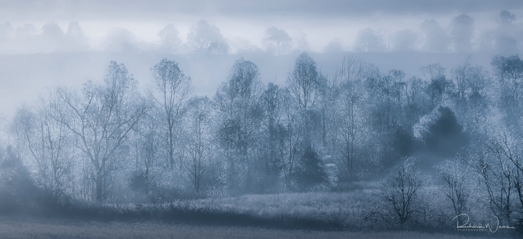 Early Morning Fog at Cades Cove - ID: 15270790 © Richard M. Waas