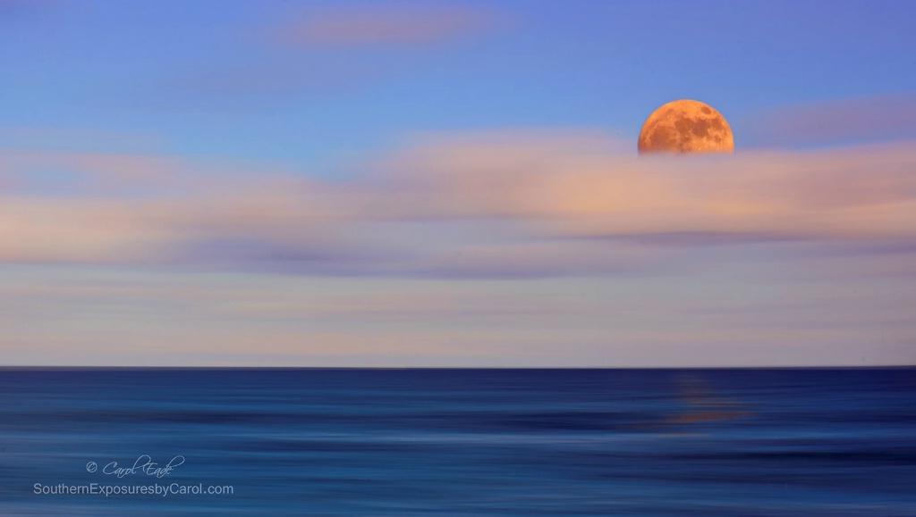 Moonrise  - ID: 15271568 © Carol Eade