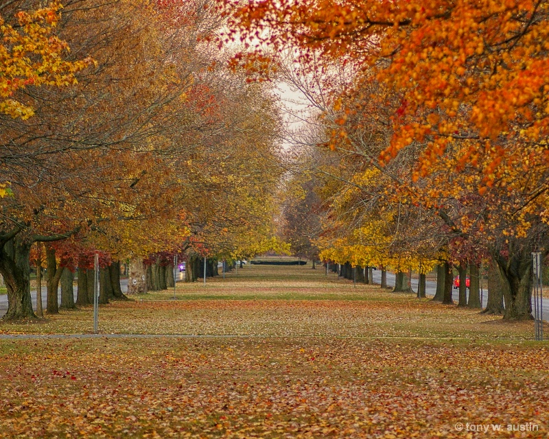 Fall on Ohio Boulevard