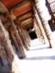 The Ancient Walkw...