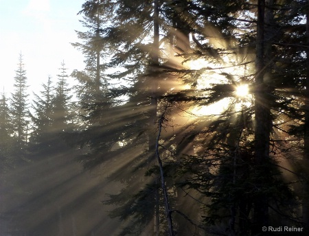 Late aftertnoon sun, Grouse mountian BC