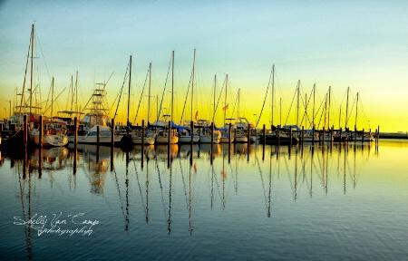 The Gulf shores