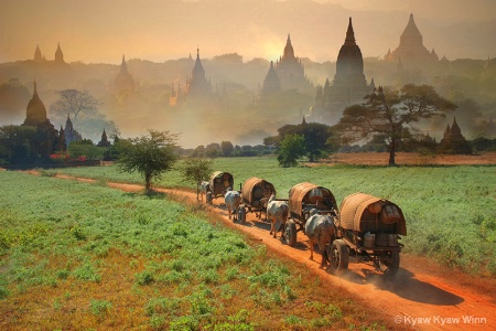 Nature of Bagan