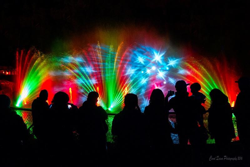 Light Show at the LA Zoo
