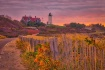 Autumn, Cape Cod ...