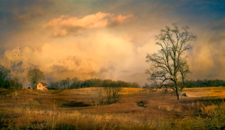 Early Spring Storm