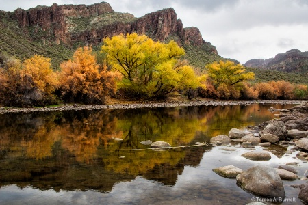The Salt River in Winter