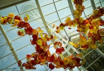 Space Needle from Chihuly Garden & Glass Atrium