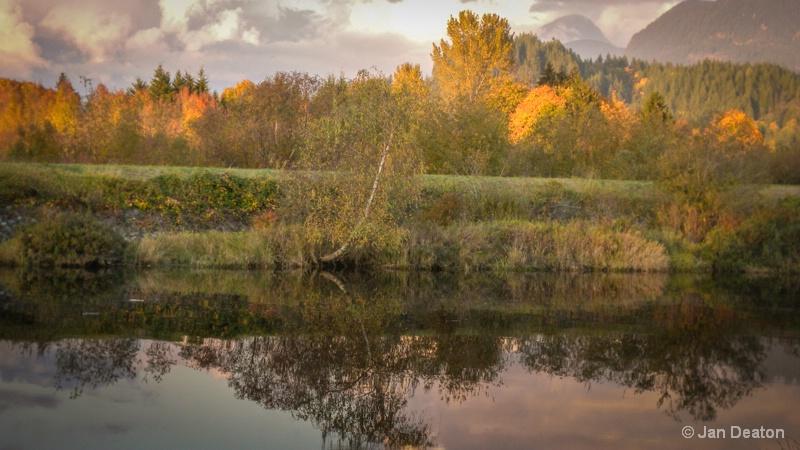 Fall in Maple Ridge