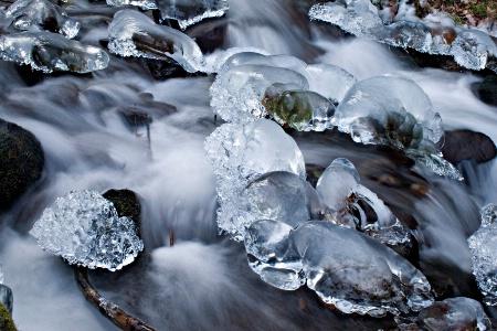 Winter at Wahkeena
