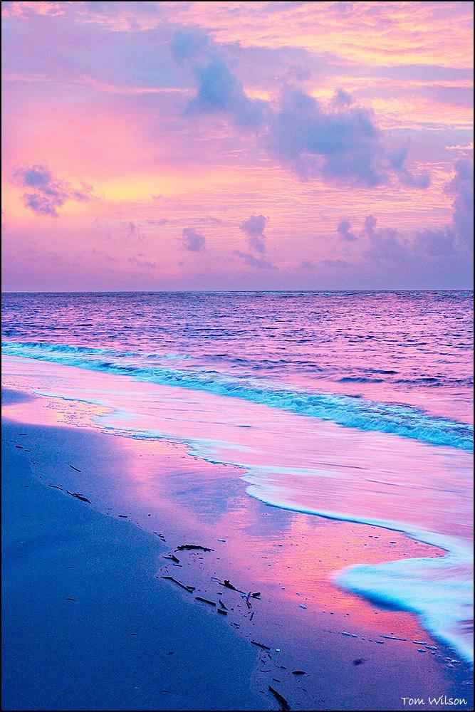Pink Light at Saint Simons - ID: 15304835 © Thomas R. Wilson
