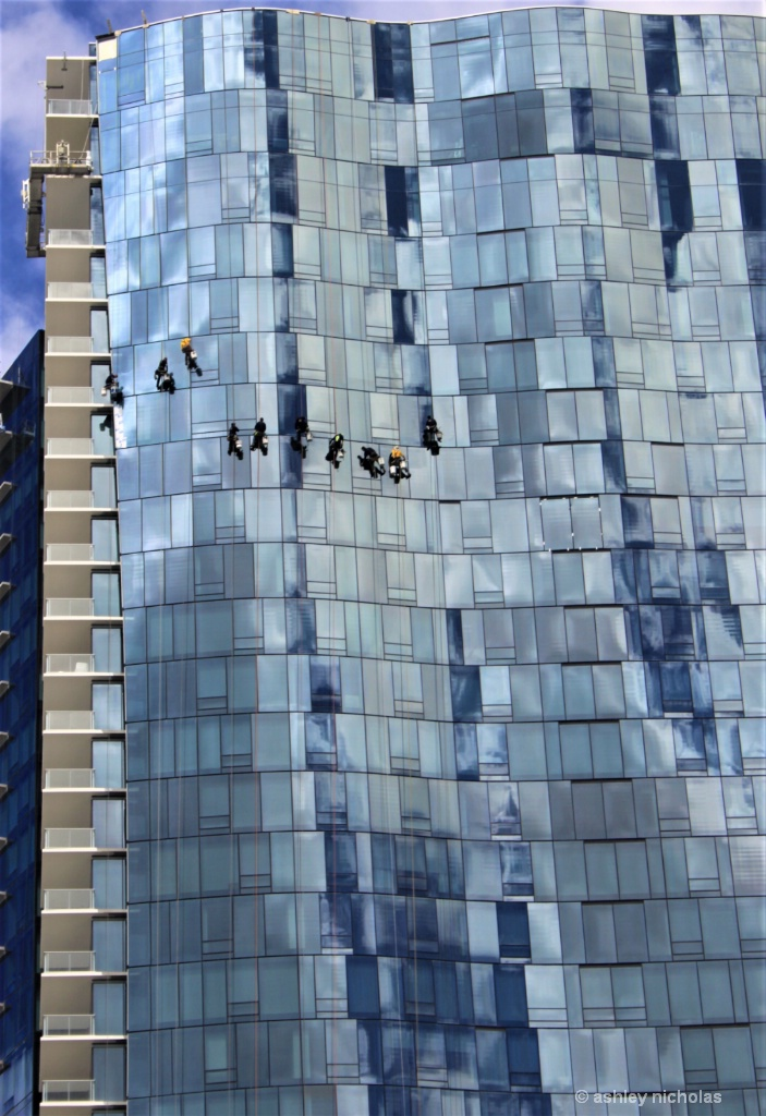 Window washers ,Honolulu - ID: 15306762 © ashley nicholas
