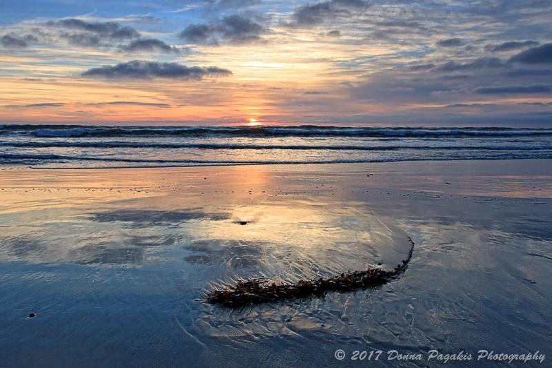 Stranded at Low Tide
