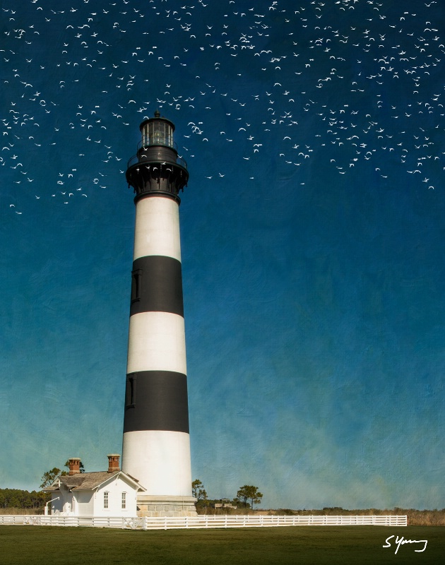 Bodie Island Light Station With Birds; NC