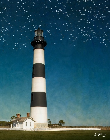 Bodie Island Light Station With Birds; NC