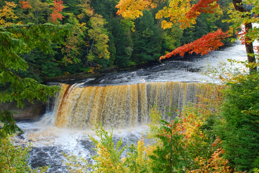 Tahquamenon Falls Autumn Splendor