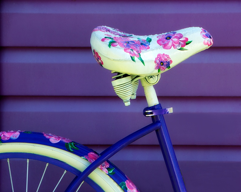Rainy Day Bike