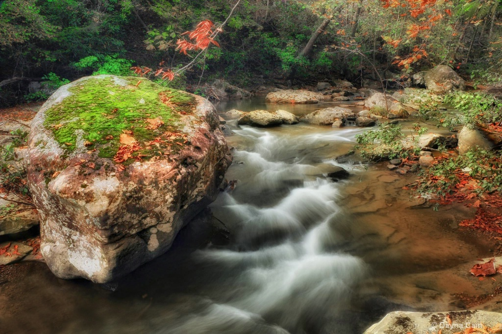 Jellico Creek