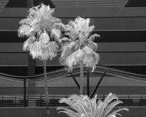 Channelside Architecture