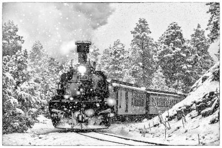 Narrow Gauge in the Snow