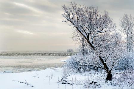 H_Snow_09