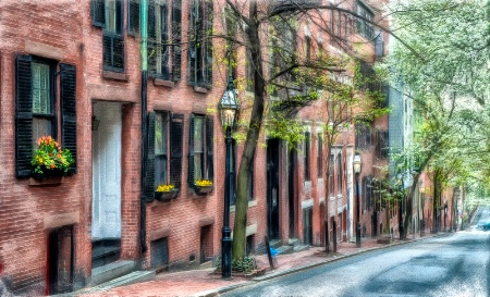 Springtime on Beacon Hill