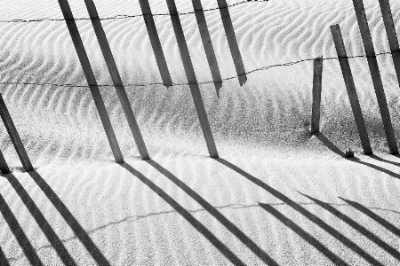 Fractured Dune Fence