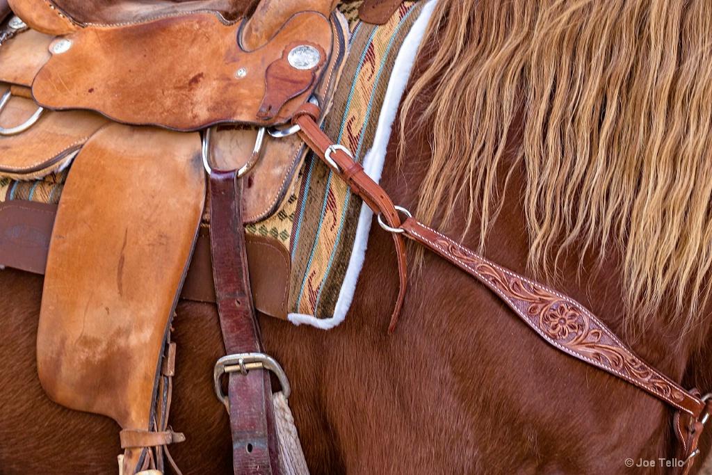 Riders Mount - ID: 15343833 © Joe Tello