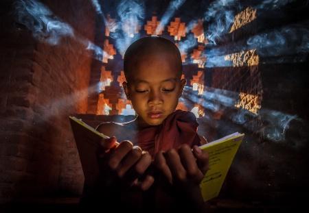 Novice reading a book