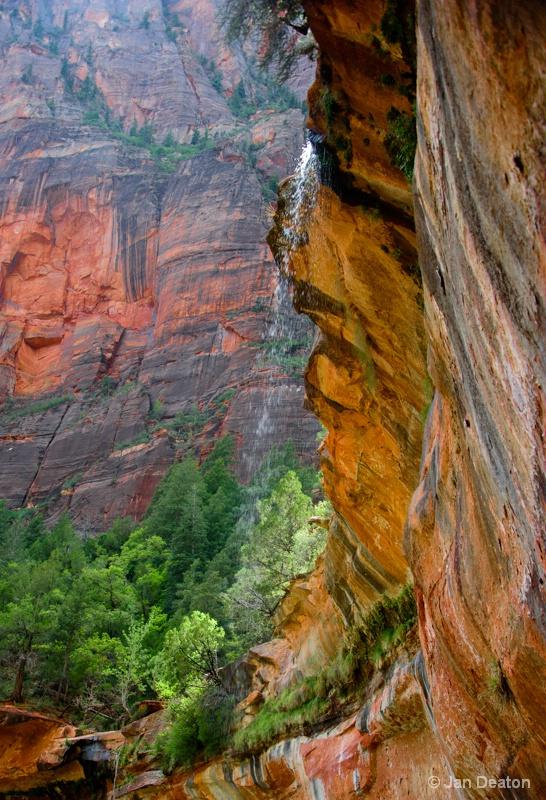 Mini Falls in Zion