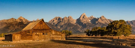 Glorious Morning in the Tetons