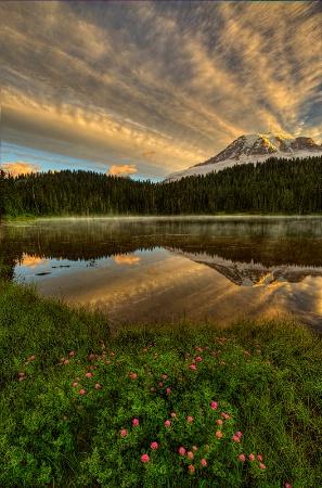 Mt. Rainier Reflection