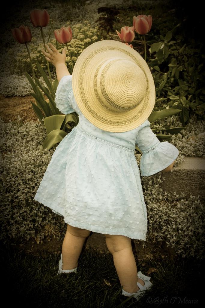 Easter Bonnet in the Garden C - ID: 15353315 © Beth OMeara