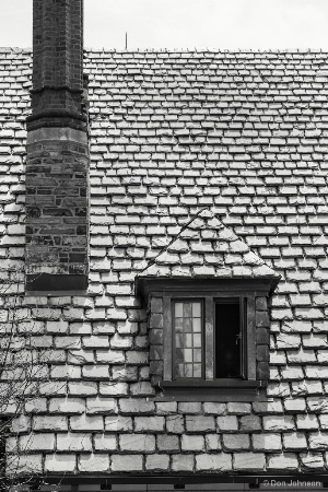 B&W Princeton Window 4-22-17 214