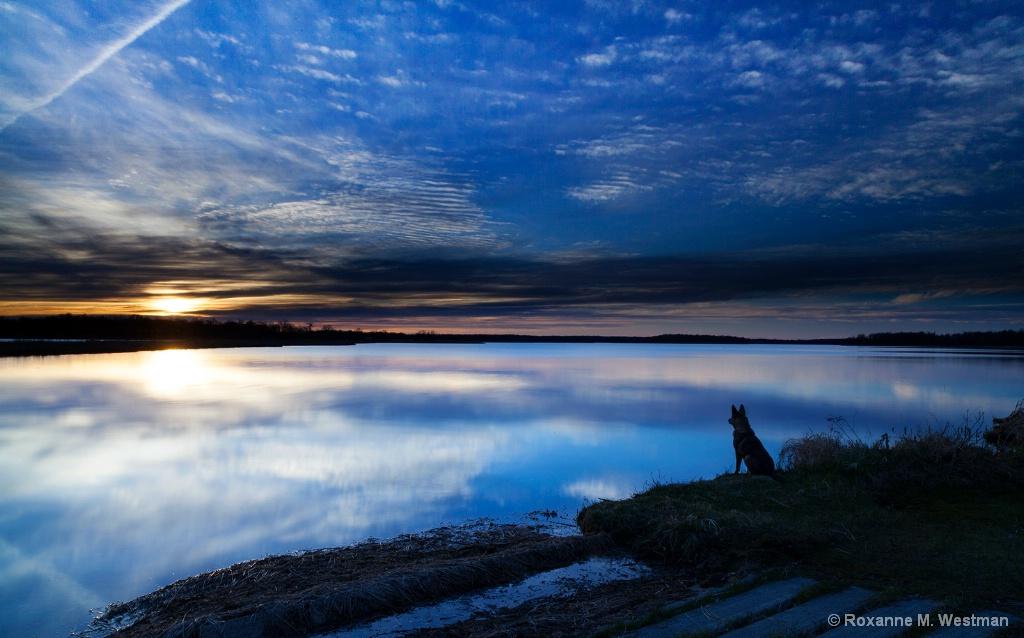 Enjoying the sunset - ID: 15361966 © Roxanne M. Westman